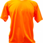 Camiseta Gola Careca